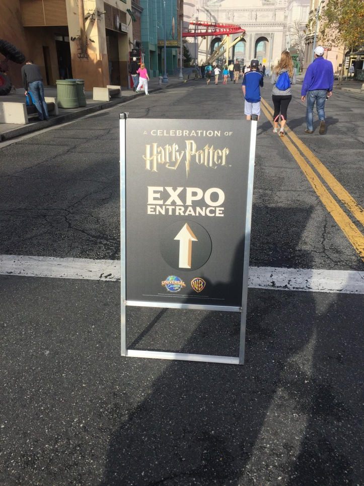 A Guide to the Celebration of Harry Potter