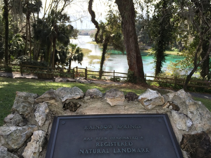waterfalls rainbow springs state park in florida that you can swim pool waterfall south keys