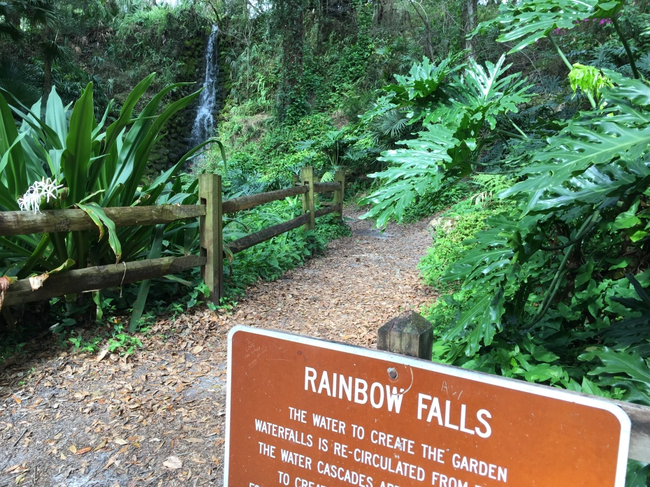 Waterfalls in Florida: Rainbow Springs State Park