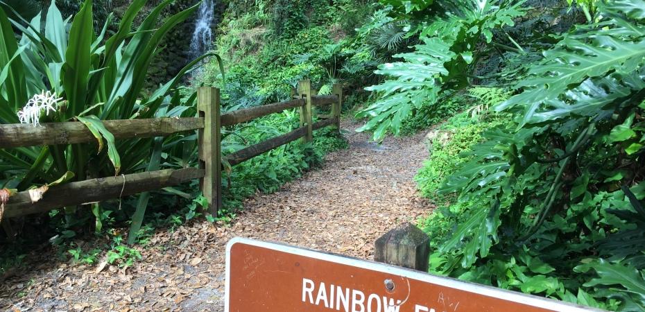 Waterfalls in Florida: Rainbow Springs State Park