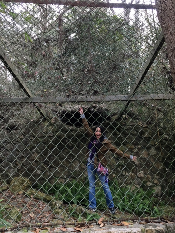 Rainbow Springs State Park - Abandoned Zoo