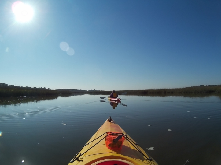 Kayaking Talbot Islands