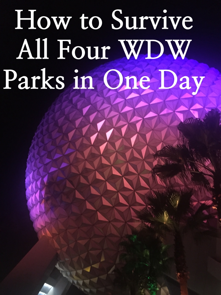 How To Survive All Four Parks in One Day