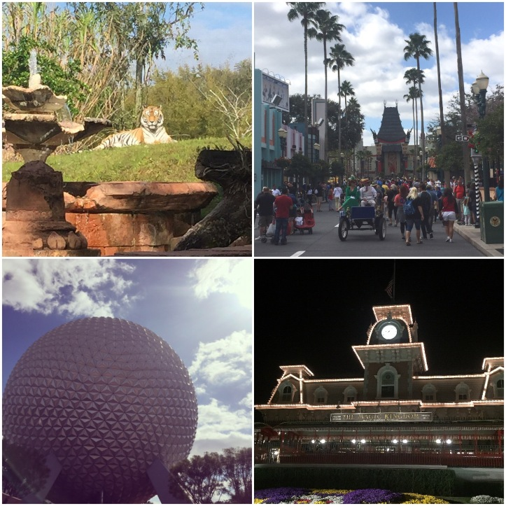 All Four WDW Parks