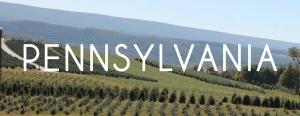 Pennsylvania Blog Posts